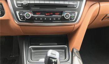 2014 BMW 3 Series full